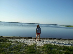 Assateague5